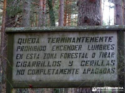 Cabeza Mediana y Camino de la Angostura; viajes de montaña; clubs de montaña madrid